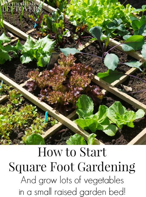 how to start a small vegetable garden in your backyard how to start square foot gardening