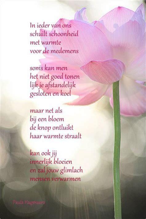 gedicht over de lotus bloem meer dan 1000 afbeeldingen over gedicht op pinterest met
