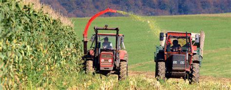 wann mais ernten bund umweltschutz normung nachhaltige biomasse