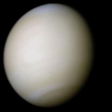 file:venus real color.jpg wikimedia commons