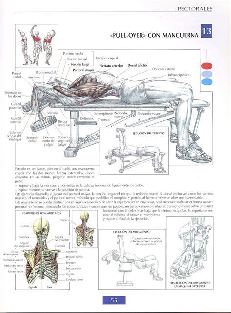 ejercicios mancuernas en casa 7 ejercicios para pectorales en casa ejercicios en casa