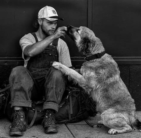 best dogs for single 8 best dogs for single guys your canine wingman s on the way