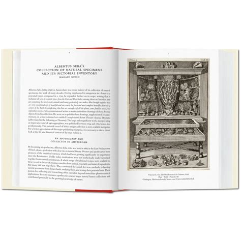 libro seba cabinet of natural albertus seba cabinet of natural curiosities iep taschen libri it