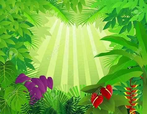 jungle clip jungle background clipart clipart jungle