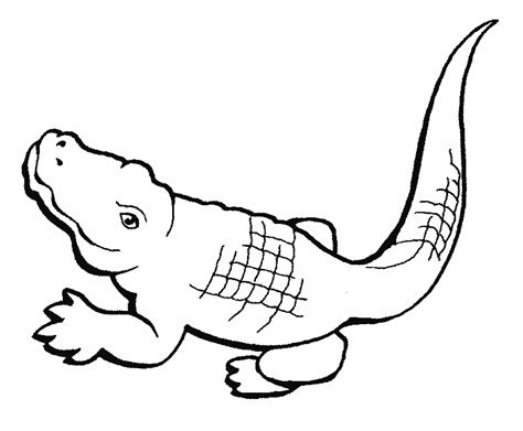 Free Coloring Pages Crocodiles Crocodile Coloring Pages To Print