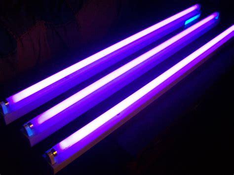 lade neon led exposiciones iv luz negra ne 243 n y fluorescencia luz