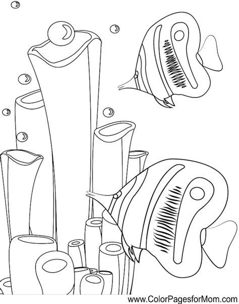 seascape ocean coloring page 48