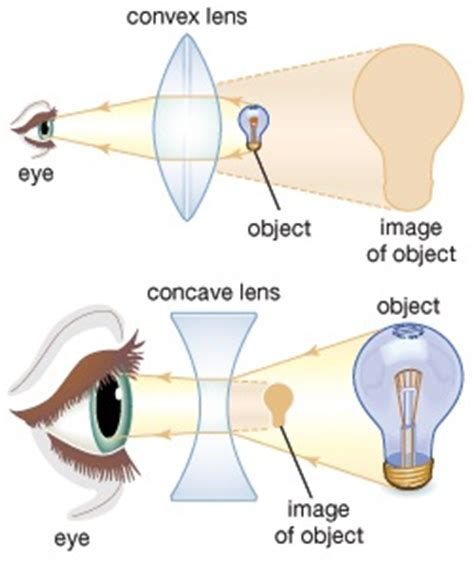 the types and uses of lenses in our life | science online