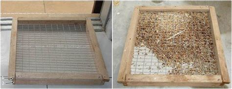Tempat Pakan Burung Koloni membuat bird feeder untuk kandang koloni klub burung