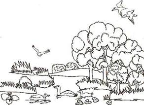 free coloring pages of animal habitat