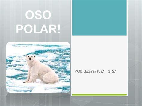 oso polar oso polar 080506902x oso polar