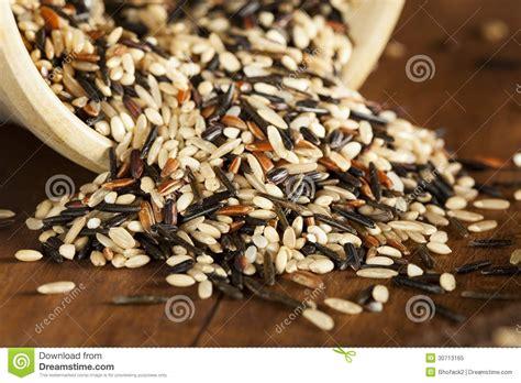 Multi Rice organic multi grain rice royalty free stock photo
