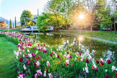 giardini di sissi merano dal 1 aprile il risveglio dei giardini di sissi merano