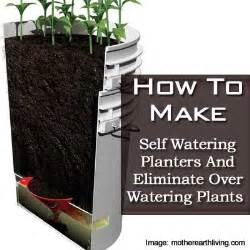 how to make self watering planters and eliminate