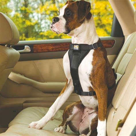 kurgo car seat belt kurgo black tru fit smart release dual walking