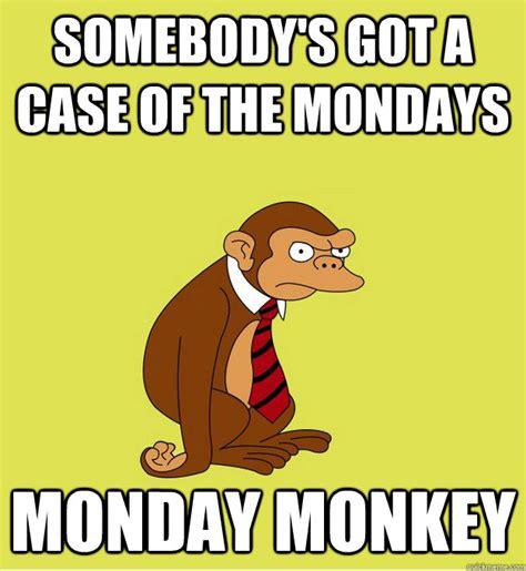Case Of The Mondays Meme - monday monkey memes quickmeme