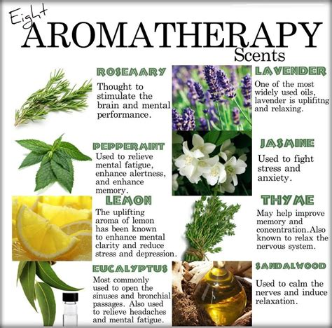 Aromatherapy Essential remedies is mold in your home you sick