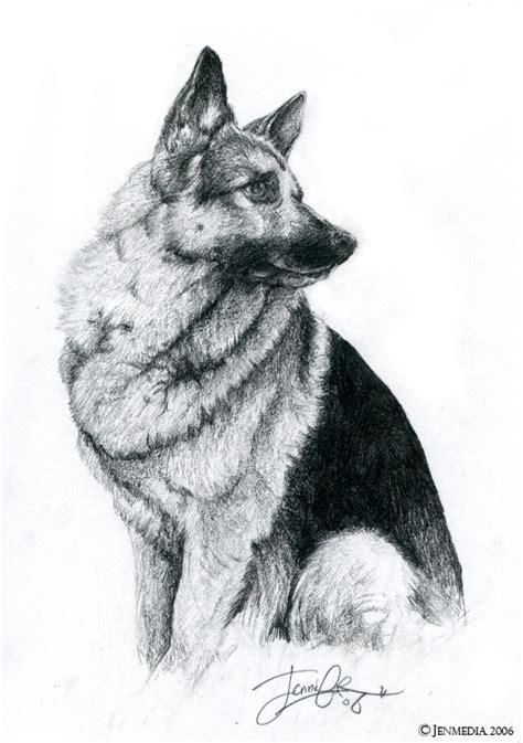 german shepherd drawing german shepherd by lillidan86 by dogs on deviantart