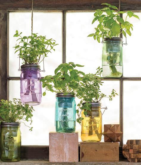 watering mason jar indoor herb garden