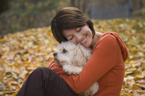 best cuddle dogs dogs being cuddled by their owners say scientists evening standard