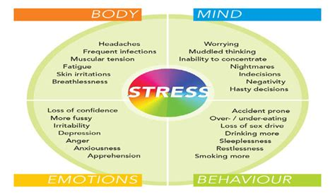 stress symptoms stress symptoms types of stress get tips for reducing avoiding stress