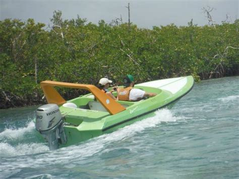 mini boats cancun speed boat and snorkeling trip picture of speed boats