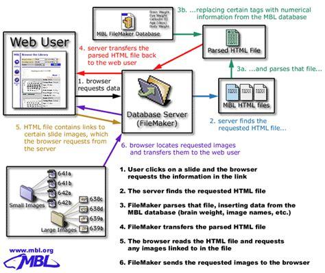 tutorial website database sle slide databases