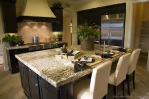 Kitchen Ideas With Black Cabinets by Pictures Of Kitchens Traditional Black Kitchen