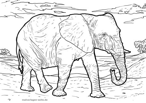 malvorlage elefant tiere