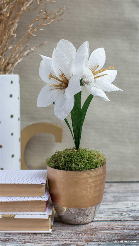 Kem Basic Flower