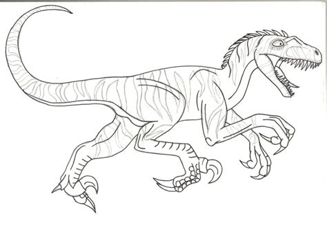 coloring pages velociraptor velociraptor page coloring pages