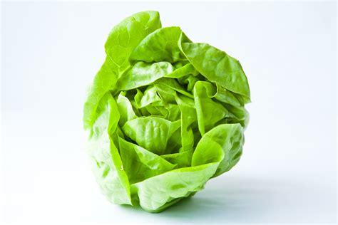 imagenes lechugas verdes expertos condis lechugas y verduras frescas para tus