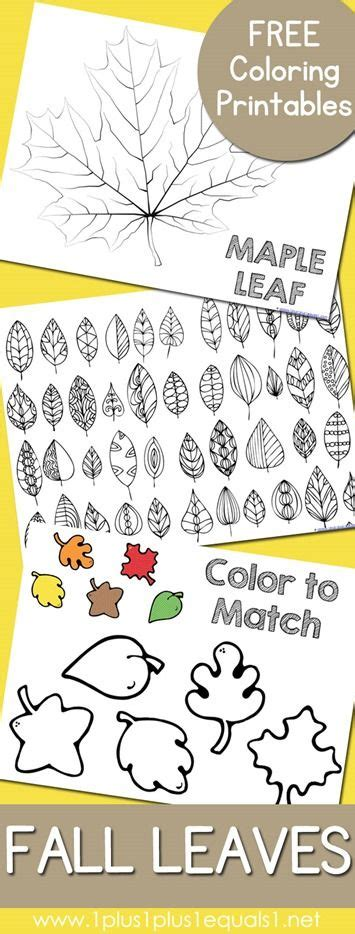 printable leaves for kindergarten fall leaves and trees coloring printables fall leaves