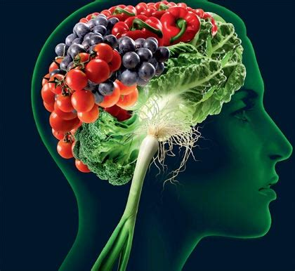 how to feed a brain nutrition for optimal brain function and repair books best food for your brain boost your brainpower