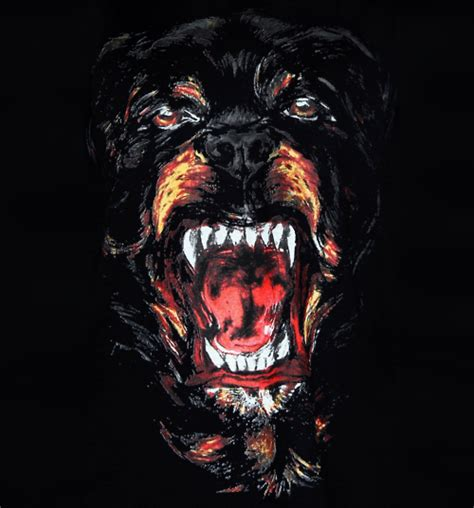 givenchy rottweiller keira meets chanel givenchy rottweiler shirt