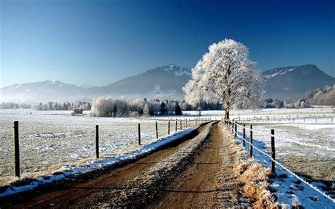 paesaggio invernale sfondi desktop wallpapers e pelautscom pictures scarica sfondi paesaggio invernale albero strada