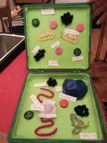 Plant cell3d plants cell models schools ideas schools projects cell