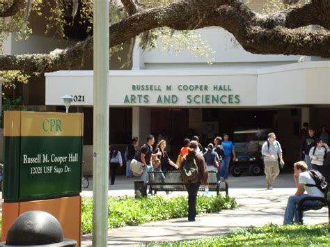 Of South Florida Mba Placements by U S Universities International Student Placement S