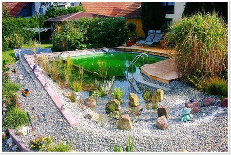 Schwimmteich Mit Fischen by Einen Schwimmteich Im Garten Badeteich Bauen