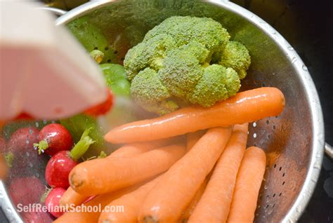 fruit and vegetable wash simple fruit and vegetable wash self reliant school