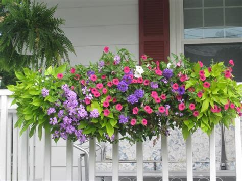 window box flower designs venture away from your window and add a flower box to