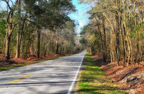 Free Photo South Carolina Landscape Scenic Free Image South Carolina Landscape
