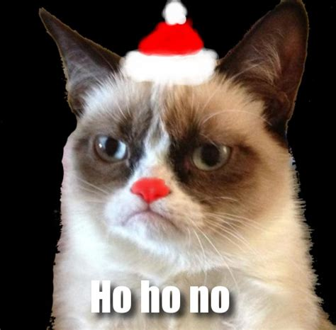 Merry Christmas Cat Meme - gregs doing i t 187 holiday grumpy cat internet meme
