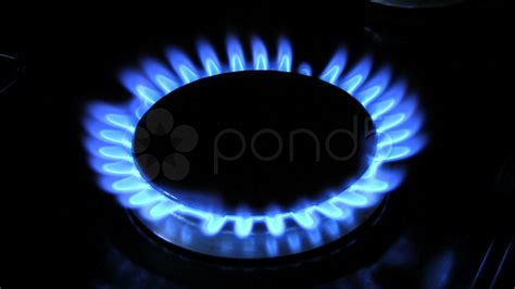 Gas Ring Flames On A Gas Ring Burner Of A Gas Cooker