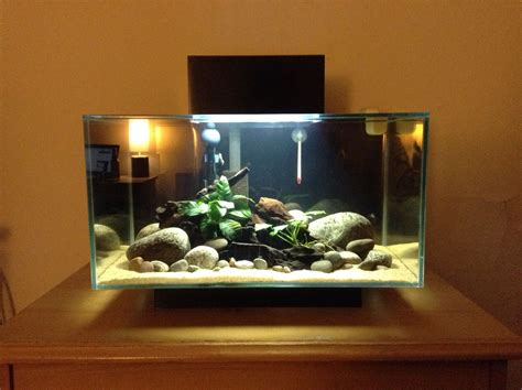 Edge Tank fluval edge 6 gallon aquarium fluval edge