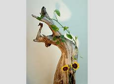 Driftwood Flowers Free Stock Photo - Public Domain Pictures My Online Account