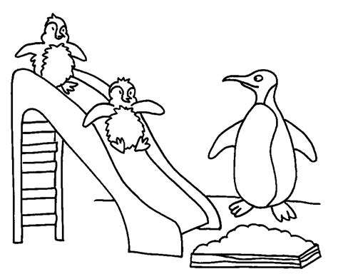 what color are penguins free coloring pages of colour in penguin