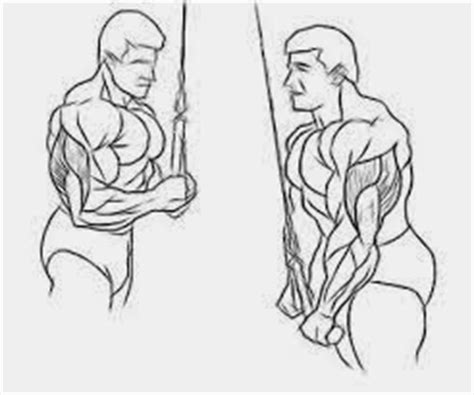 build more muscle fast: triceps pushdown