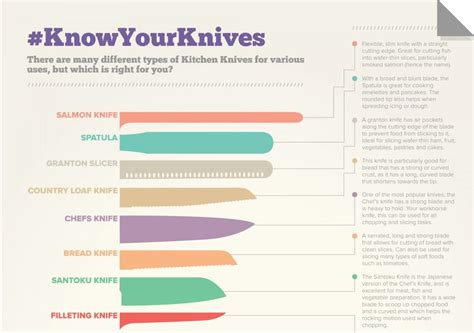 cooking infographics must have kitchen infographics my cute home