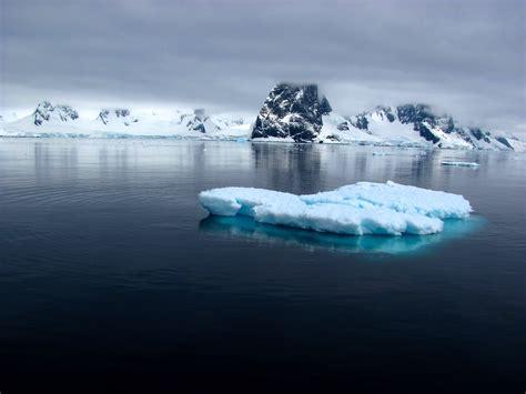 The Iceberg the iceberg effect qfl